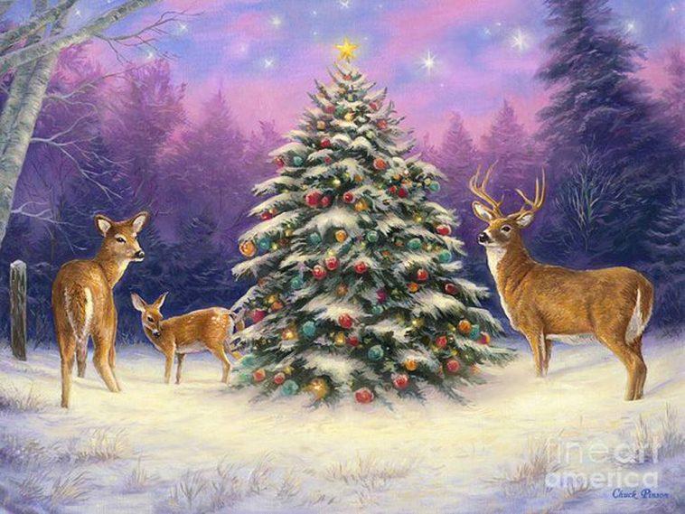 Alberi Di Natale Per Auguri.Frasi Auguri Di Natale Per Chi Soffre