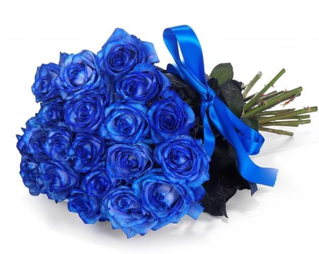 Rose Blu Significato E Occasioni Per Regalarle